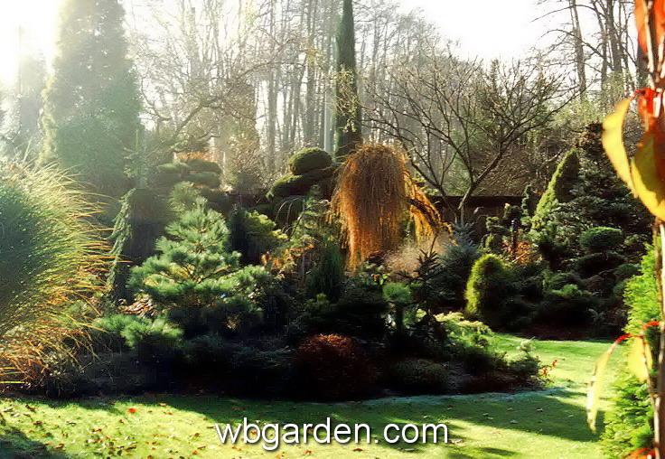 Zahrada plná čarověníků.