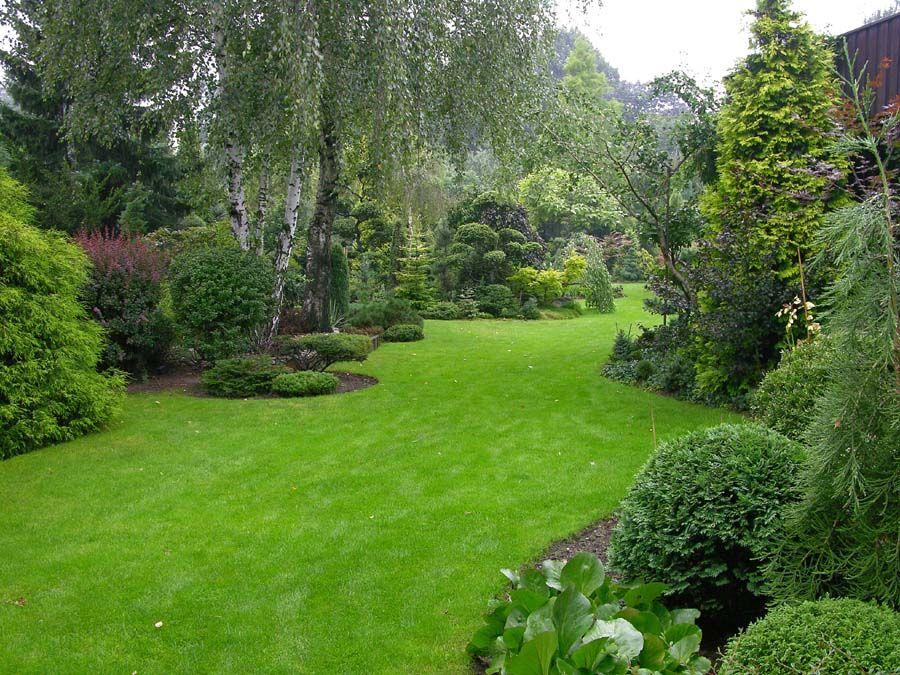 Large Garden Ideas 166 best outdoors images on pinterest garden layouts landscaping dwarf conifer garden by jan slama workwithnaturefo